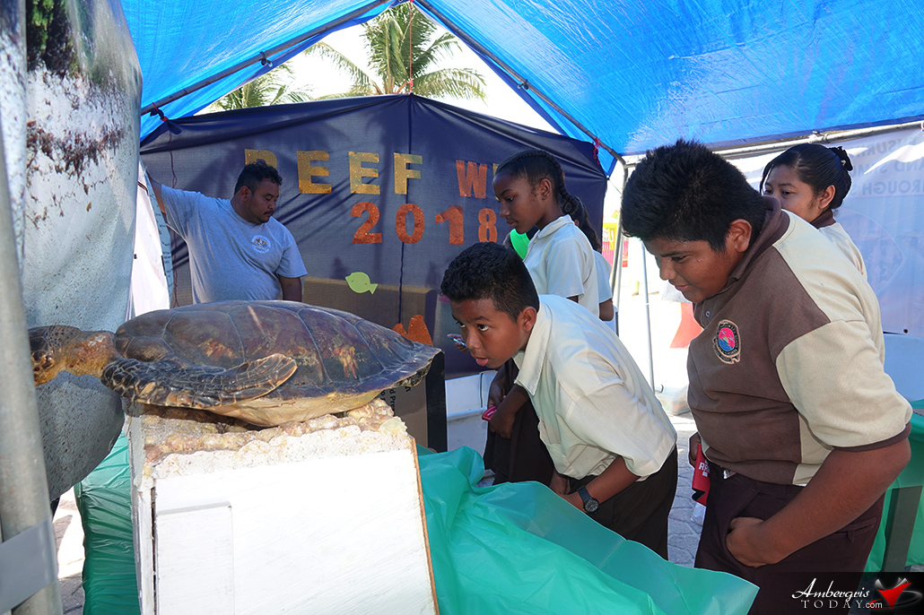 Hol Chan Holds Informative Reef Fair