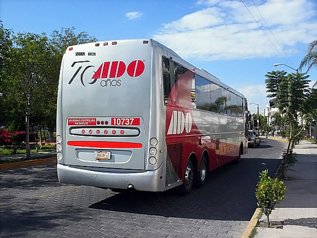ADO Bus Company Says Belize Route Proving Successful