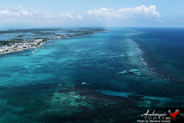 Government Pledges to Remove Belize's Barrier Reef from World Heritage in Danger