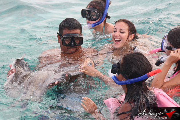 Miss Mexico and the Costa Maya Pagenat contestants pet a nurse shark
