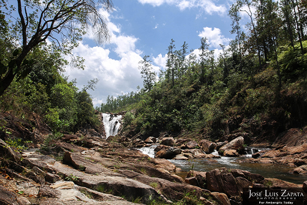 12 Million Dollar Project to Boost Belize Forests