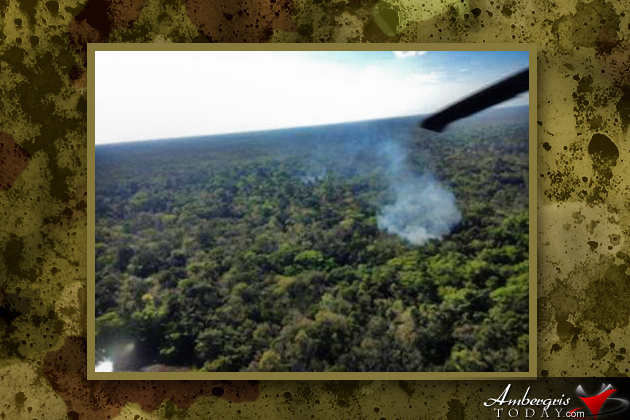 $29 Million Worth of Marijuana Destroyed by US/BZE Joint Task Force