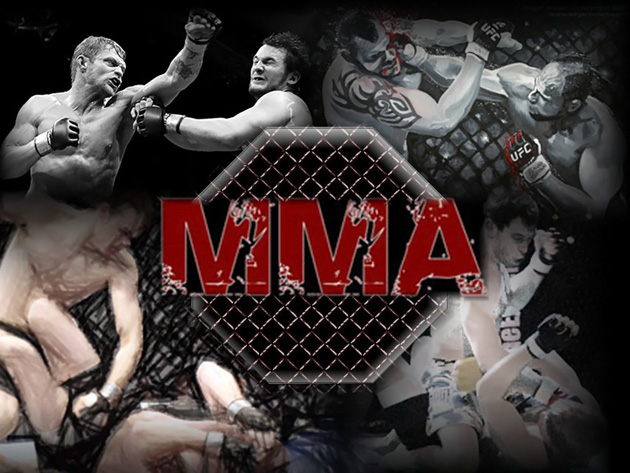 1st Ever Mixed Martial Arts Seminar