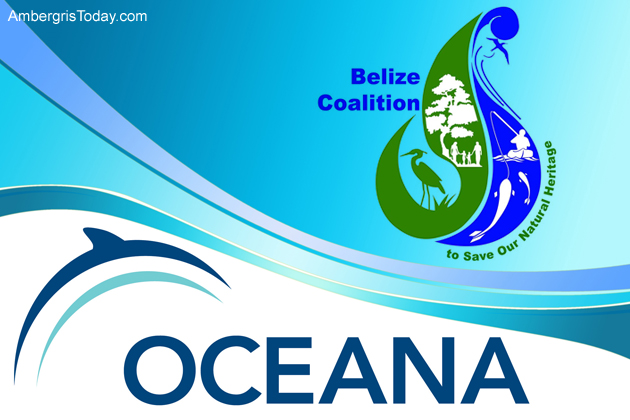 Oceana and Maya Community Win One Against Oil Drilling in Belize