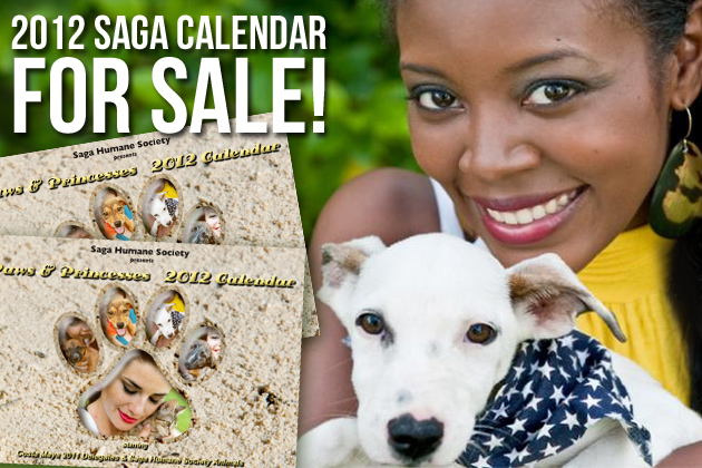 2012 SAGA Calendars For Sale! Idolly Saldivar