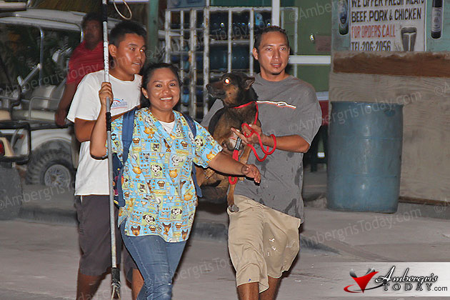 Mayor Keeps Promise of Humane Capturing of Stray Dogs