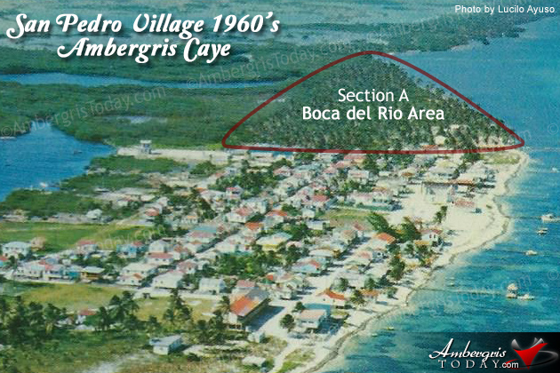 Growing Stages of San Pedro, Ambergris Caye
