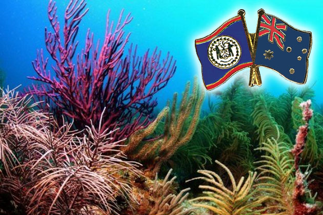 Belize and Australia to Host the International Coral Reef Initiative(ICRI)