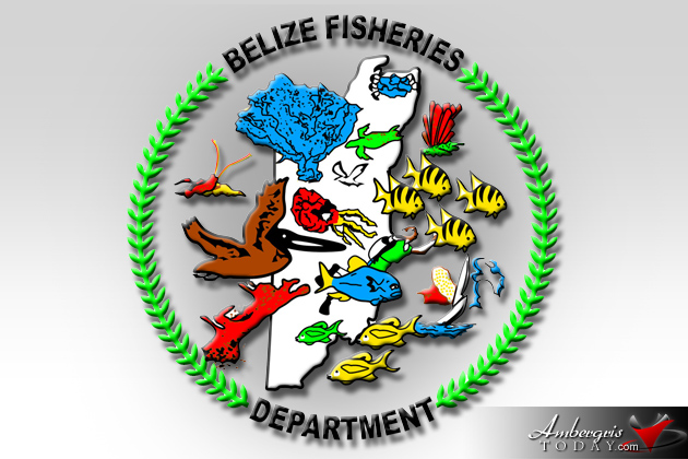Belize Fisheries Department Now Issuing Fisher folk Licenses
