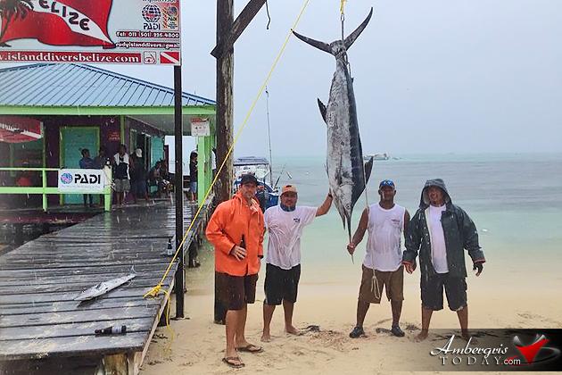 165 pounder highlights captain sharks fishing tournament for Fishing san pedro belize