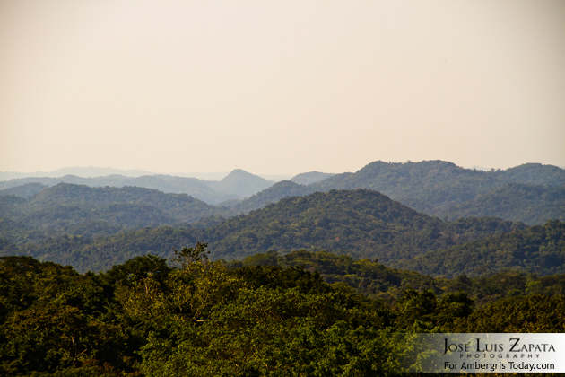 Action Planning for Central Belize Corridor (Forest and Maya Mountains)