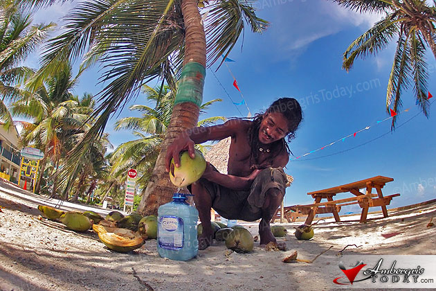 Coconut Leo collects fresh coconut water on the beach, Ambergris Caye, Belize