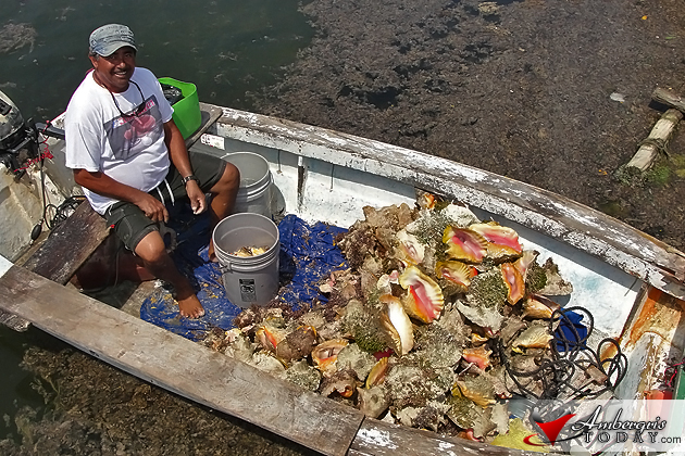 Mr. Geraldo Badillo Sr. proud of his conch catch