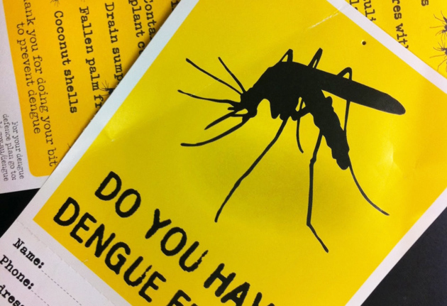 Health Officials Monitoring Dengue Cases in San Pedro, Belize