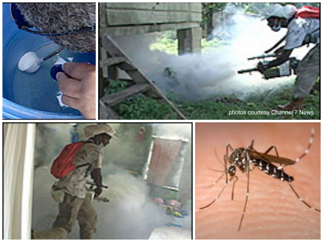 Dengue Outbreak Hits 261 People in Belize, No Deaths Recorded