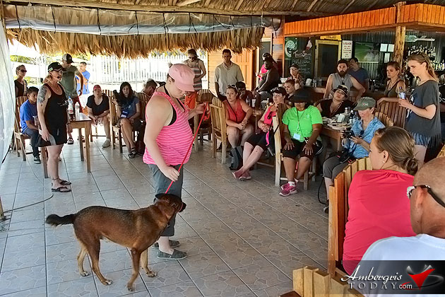 Dog Training Education at Sea Comes to San Pedro, Ambergris Caye, Belize