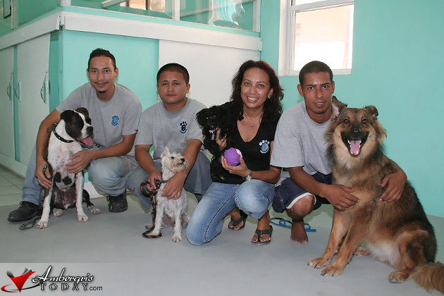 Pampered Paws Staff Alan Soto, Desiderio, Kathy Marin and Dave