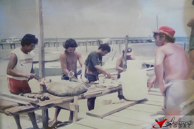 flashback Conch in Abundance in San Pedro Ambergris Caye