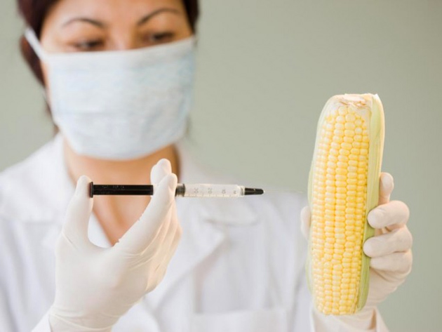 Biologically Appropriate Technology or GMO