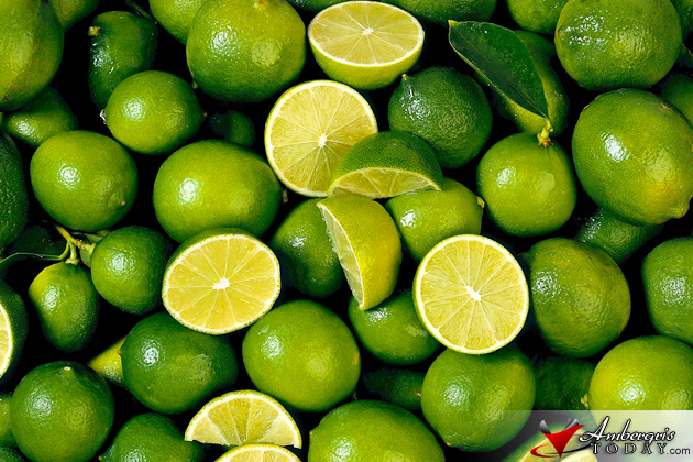 Lime Shortage Crisis Hits the Region
