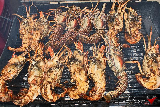 OH NO! Lobster Season Can't Wait for Open Season