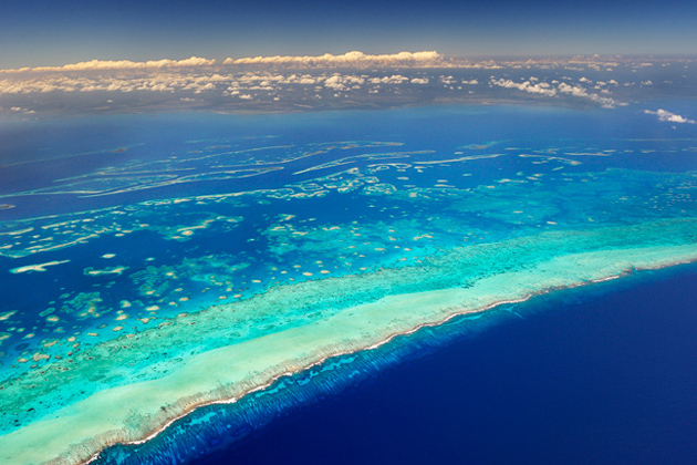 The Great Belize Barrier Reef makes up the Mesoamerican Reef
