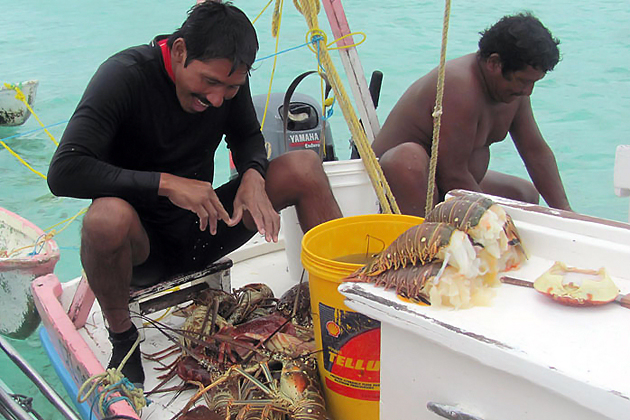 Netting Change for Fisheries in Belize