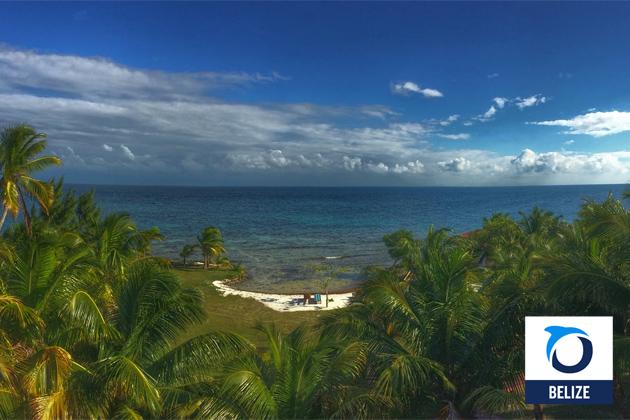Oceana Belize Calls Petroleum Dept. Proposed Policy on Offshore Drilling Weak on