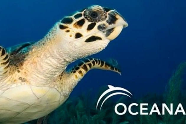 Oceana Challenging GOB Disqualification of Referendum Petition Signatures
