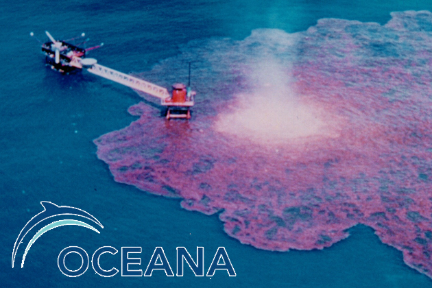 Oceana and Referendum Agains Offshore Oil Drilling in Belize