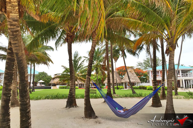 Tourist relaxing on hammock under coconut tree canopy at Victoria House Resort