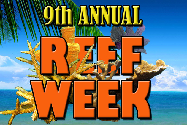 Hol Chan Marine Reserve Announces Reef Week Activities