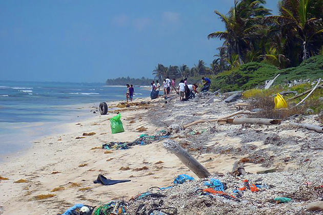 Clean Up Campaign for North Ambergris Caye during Reef Week