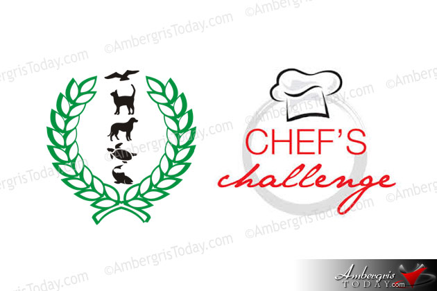 Saga Humane Society Celebrates 15th Anniversary with Top Chef Challenge