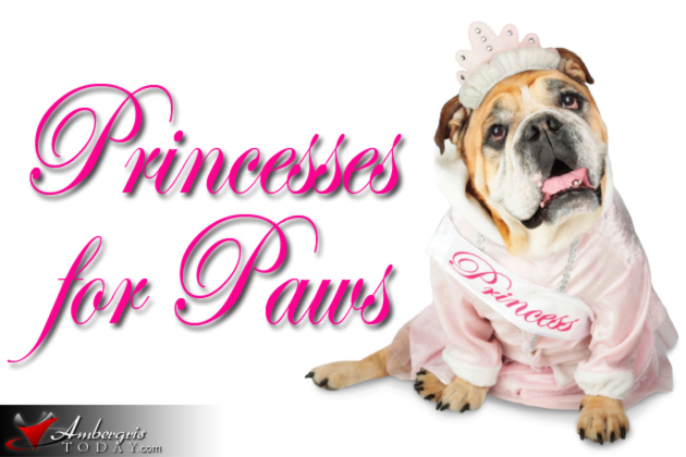 Saga's Princesses for Paws