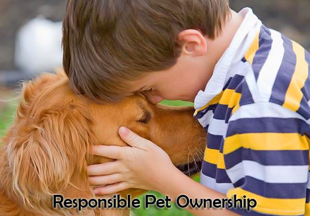 Saga Humane Society Prepares for National Pet Week Activities