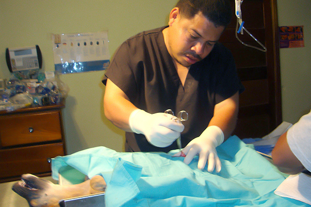 Dr. Orlando Baptist performing simple spay procedure on a much loved pet