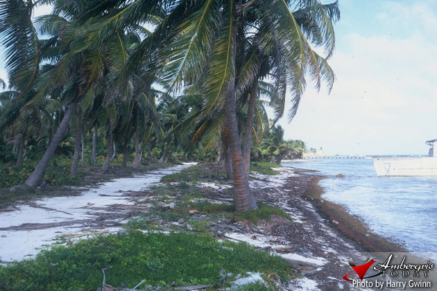 Twenty Five Years Ago-San Pedro Ambergris Caye Streets Roads
