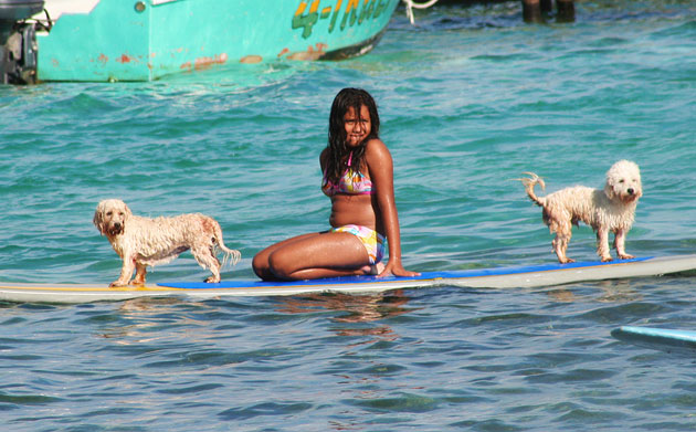 Elina Palma and her surfing dogs