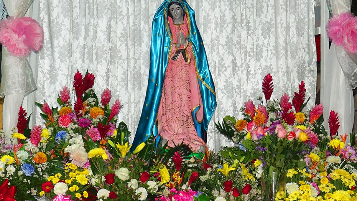 Celebration of the Virgin Of Guadalupe
