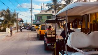 Is the Growing Traffic on Ambergris Caye a Problem or Blessing?