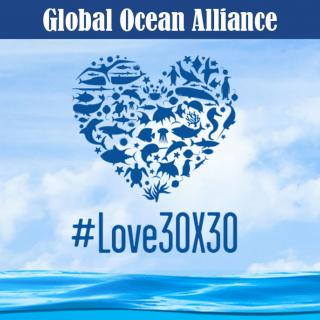 """Belize is one of the First Countries to Support New Global Alliance """"30by30"""""""