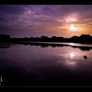 JCariddi Photography, New River, Belize - by Jonathan Cariddi