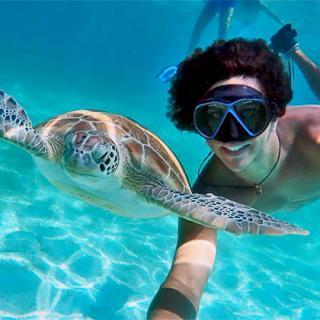 Wild Underwater Adventures in Belize