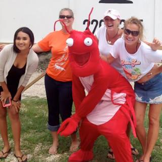 Lobsters Just Wanna Have Fun, Lobster Crawl, San Pedro Lobsterfest 2016