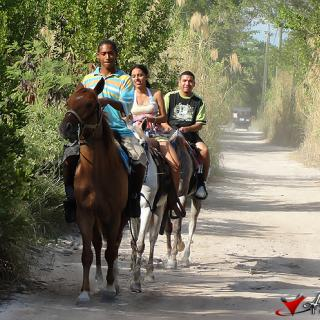 Taking in the views of North Ambergris on horseback