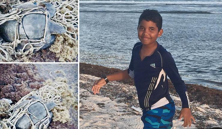 12-Year-Old Jeffrey Rescues Entangled Sea Turtle